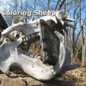 sheepwalking kills